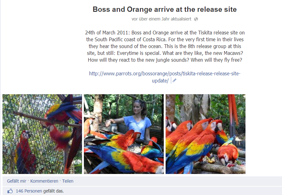 Boss und Orange Release Site_ Facebook